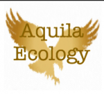 Easter Events Aquila Ecology